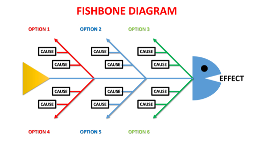 Fishbone Diagram  The Meat Of Root Cause Analysis  U2013 Seeds